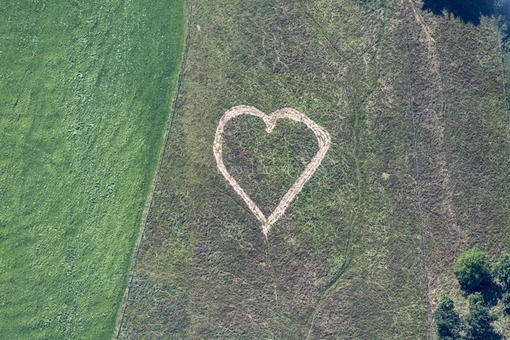 Aerial view of a heart in the meadow - Klaus Leidorf Aerial Photography