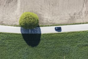 Aerial view of a ball tree - Klaus Leidorf Aerial Photography
