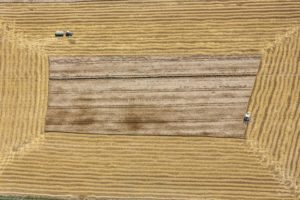 Aerial photograph of a combine harvester during grain harvest - Klaus Leidorf Aerial Photography