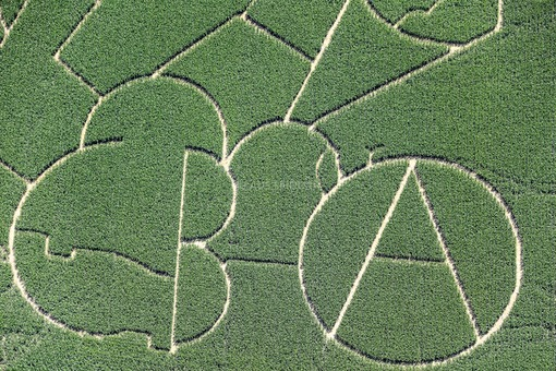 Aerial view of a corn labyrinth near Munich-Langwied - Klaus Leidorf Aerial Photography
