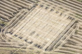 Aerial photograph of a harvested seed breeding field - Klaus Leidorf Aerial Photography