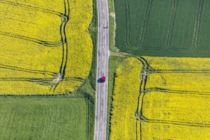 Aerial view of a red car between yellow rape fields - Klaus Leidorf Aerial Photography