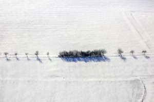 Aerial view of a row of trees along a snowy field path - Klaus Leidorf Aerial Photography