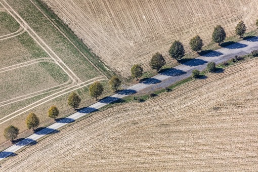 Aerial view of a row of trees along the mountain road in Binabiburg - Klaus Leidorf Aerial Photography