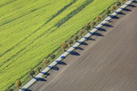Aerial view of a row of trees along the country road - Klaus Leidorf Aerial Photography