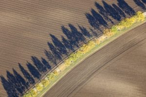Aerial view of a row of trees in an arch - Klaus Leidorf Aerial Photography