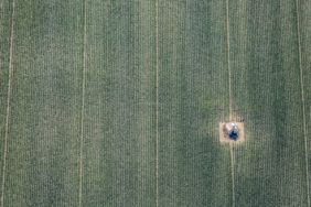 Aerial view of a field chapel in a corn field - Klaus Leidorf Aerial Photography
