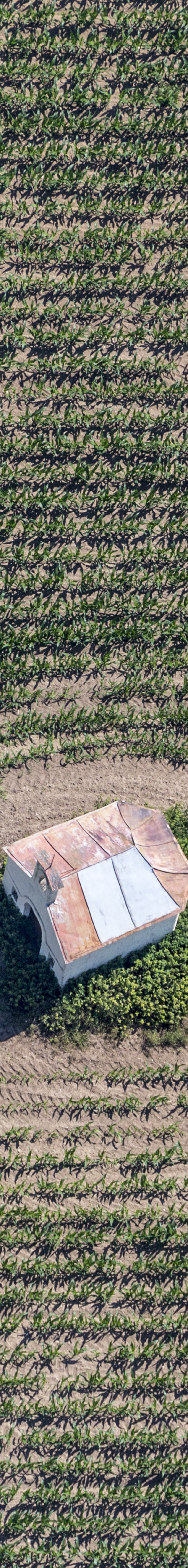 Aerial view of a field chapel in a maize field - Klaus Leidorf Aerial Photography