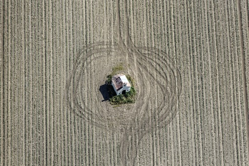 Aerial view of a field chapel surrounded by tractor tracks in the young maize field near Thaldorf - Klaus Leidorf Aerial Photography