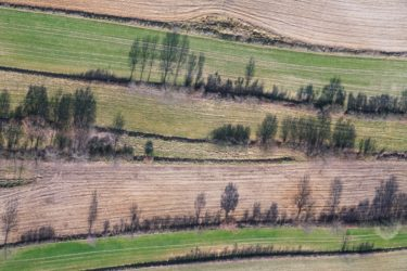 Aerial view of a hedge landscape on terraced fields - Klaus Leidorf Aerial Photography