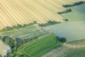 Aerial view of a hedge landscape near Vatersdorf - Klaus Leidorf Aerial Photography