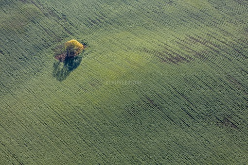 Aerial view of an autumn island in the field - Klaus Leidorf Aerial Photography