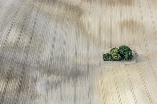 Aerial view of an island in the field - Klaus Leidorf Aerial Photography
