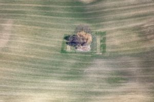 Aerial view of an island with trees in the farmland - Klaus Leidorf Aerial Photography
