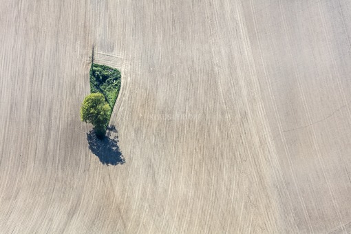 Aerial view of an island with a dead tree in the farmland - Klaus Leidorf Aerial Photography