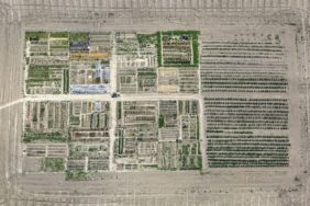 Aerial view of an allotment garden in Landshut-Schönbrunn - Klaus Leidorf Aerial Photography