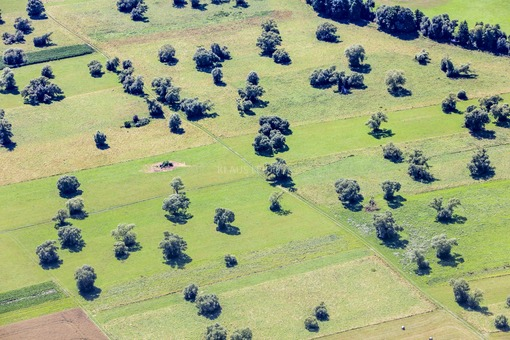 Aerial view of a landscape with a loose tree population near Alzenau in Lower Franconia - Klaus Leidorf Aerial Photography