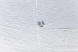 Aerial view of a bench under two trees on a snow-covered field - Klaus Leidorf Aerial Photography
