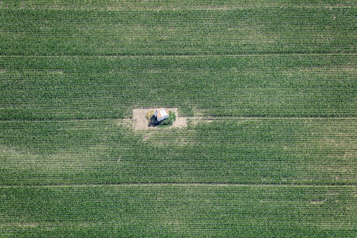 Aerial view of a lonely field chapel in the middle of a cornfield - Klaus Leidorf Aerial Photography