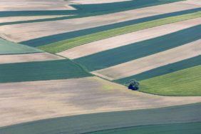 Aerial view of an almost completely cleared agricultural landscape - Klaus Leidorf Aerial Photography