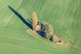 Aerial view of a small island with autumnal poplar in the farmland near Airischwand - Klaus Leidorf Aerial Photography