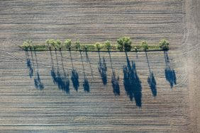 Aerial view of an elongated island with trees in arable land - Klaus Leidorf Aerial Photography