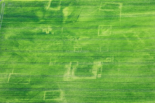 Aerial view of a villa rustica, which can be recognized as a negative vegetation feature in the grain field - Klaus Leidorf Aerial Photography