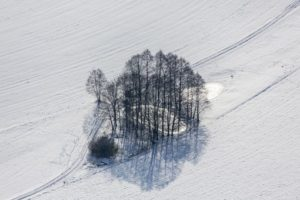Aerial view of glittering ice between shady trees on the bank of the pond - Klaus Leidorf Aerial Photography