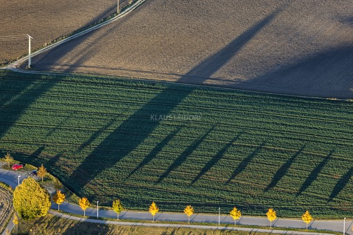 Aerial view of shady autumn trees - Klaus Leidorf Aerial Photography
