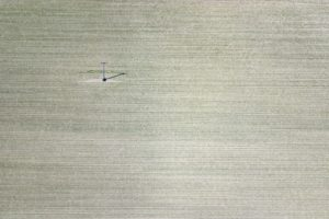 Aerial view of a cornfield with a power pole - Klaus Leidorf Aerial Photography