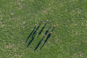 Aerial view of eight people standing in a circle at the Aquapark near Moosburg - Klaus Leidorf Aerial Photography