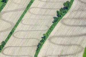 Aerial view of sine curve patterns on a field in Grafenau - Klaus Leidorf Aerial Photography
