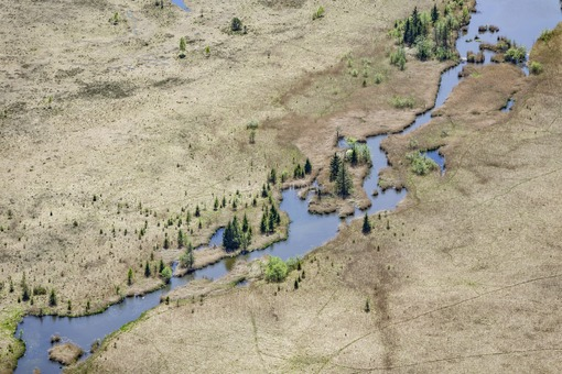 Aerial view of the meandering Rechtach stream in the nature reserve Murnauer Moos - Klaus Leidorf Aerial Photography