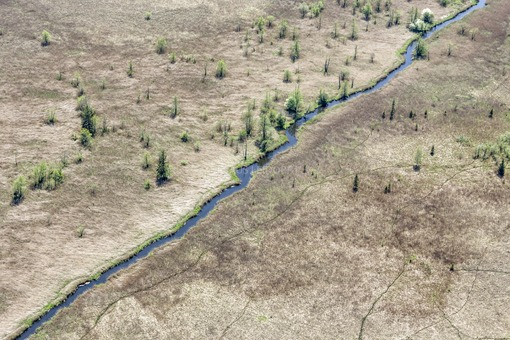 Aerial view of the Rechtach stream in the nature reserve Murnau moss - Klaus Leidorf Aerial Photography