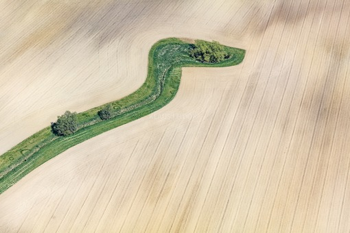 Aerial view of a green strip in the plough land - Klaus Leidorf Aerial Photography