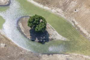 Aerial view of a small island with a tree - Klaus Leidorf Aerial Photography