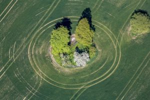 Aerial view of a circular island in a grain field - Klaus Leidorf Aerial Photography